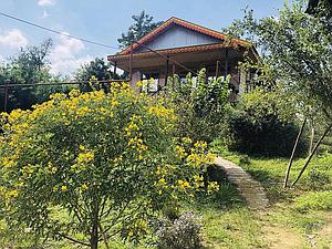اجاره ی ویلا در باغ چای قلعه رودخان فومن