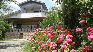 اجاره ویلا جنگلی در ییلاق طاسکوه