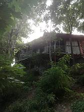 اجاره کلبه جنگلی در لاهیجان