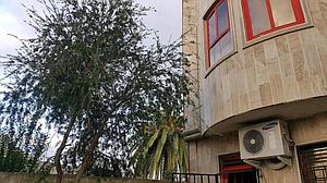 اجاره ویلا در کیاشهر (فرحناز)