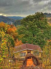 ویلای جنگلی چسبیده به دریاچه سد اقامتگاه وارش