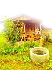 اجاره کلبه جنگلی بهشهر