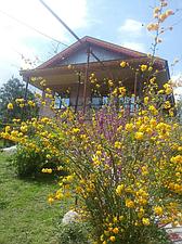 اجاره ویلا در فومن قلعه رودخان