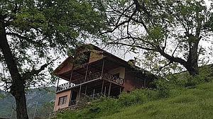 اجاره کلبه جنگلی رامیان