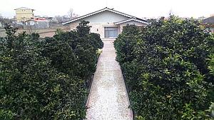 باغ ویلای دربست در تالش