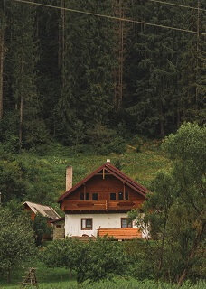 اجاره کلبه جنگلی